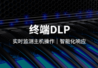 Data Leakage Protection System of Tianrui Terminal